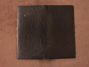 H0173